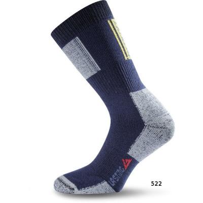 Шкарпетки Lasting EXT