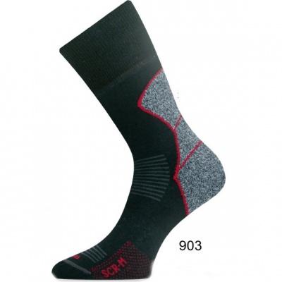 Шкарпетки Lasting SCR