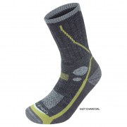 Шкарпетки Lorpen T3 Ms Midweight Hiker (T3MMH)